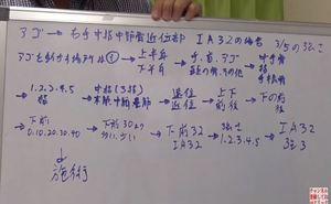 キネシオロジーチャート.JPG